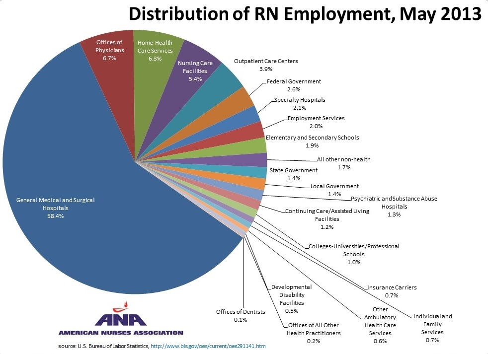Quikstats Distribution Of Rn Employment By Industry May 2013 Ana