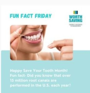 Image features a woman flossing. Copy reads: Fun Fact Friday - Happy Save Your Tooth Month! Fun fact- Did you know that over 15 million root canals are performed in the U.S. each year?