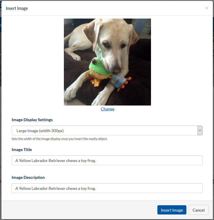 Insert Image dialog with photo of a Yellow Labrador Retriever chewing a toy frog and Image Title and Description fields that read, A Yellow Labrador Retriever chews a toy frog.