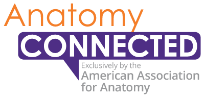 American Association for Anatomy