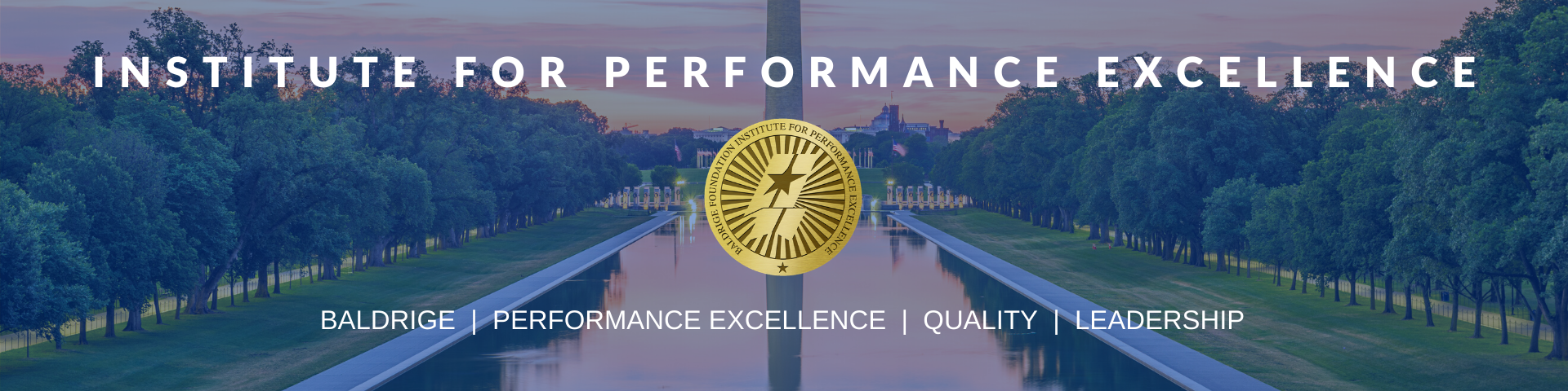 Institute for Performance Excellence