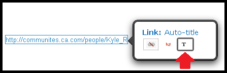 Hyperlink - renaming Auto-Title.png
