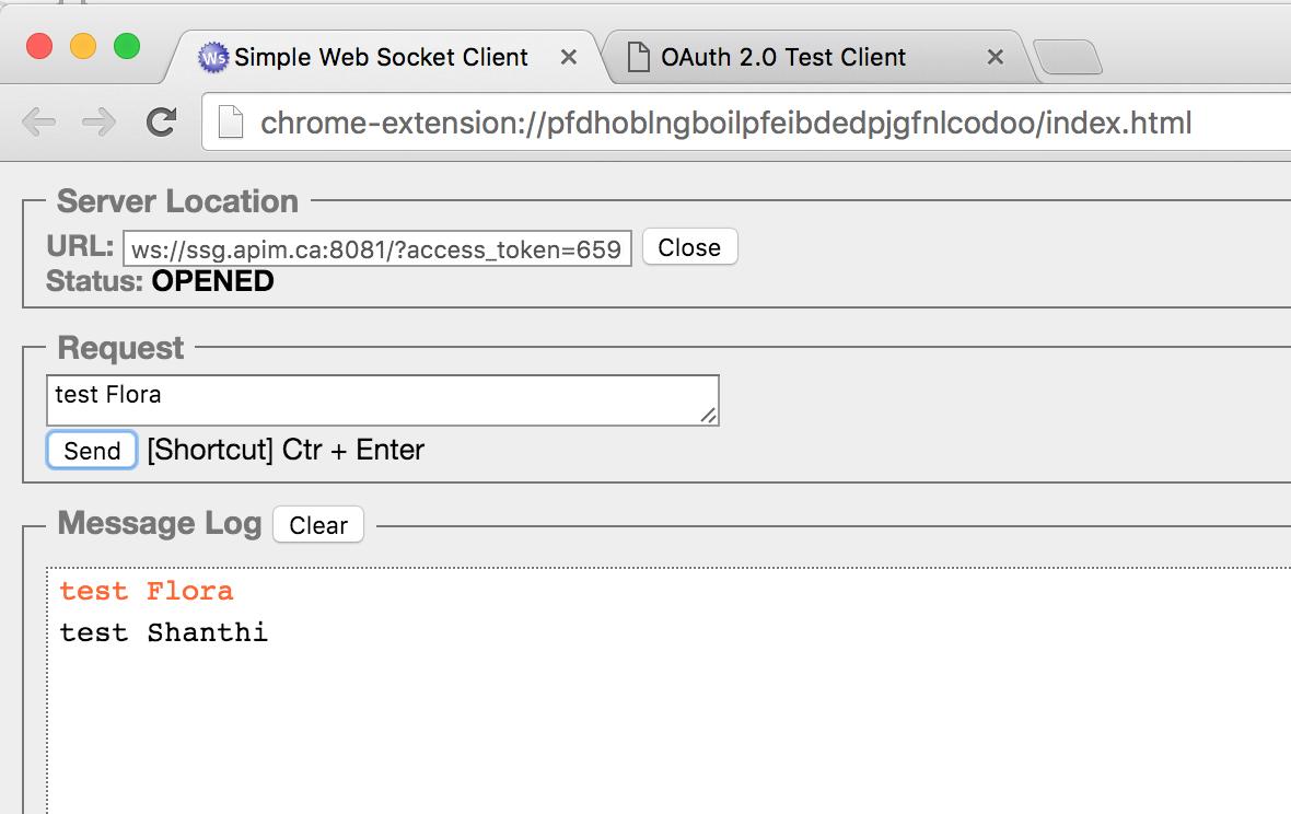 Test Websocket
