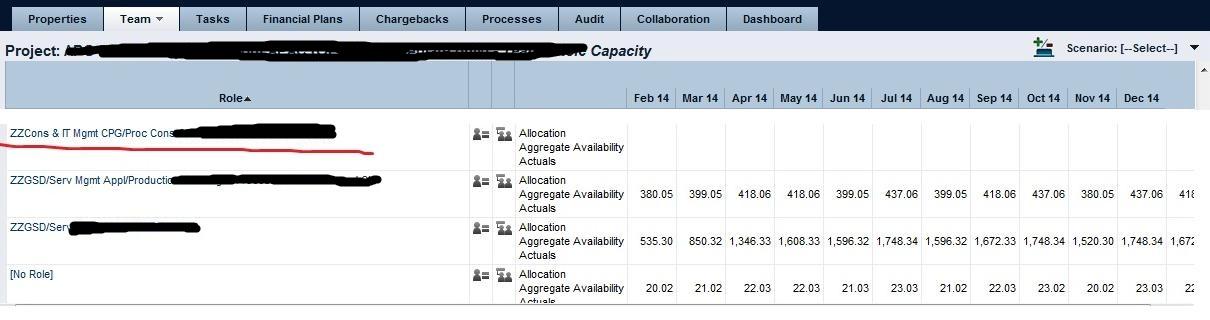 Team_Role_Capacity_tab.jpg