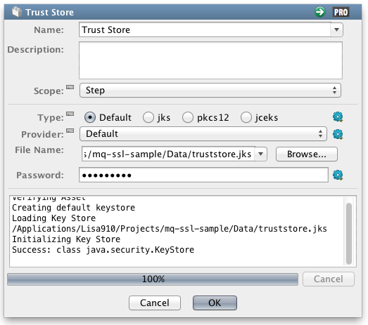 Put Messages In Ibm Mq With Java