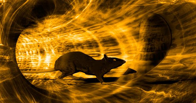 nanocore-rat-header.jpg