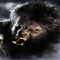 WolfmanF.jpg