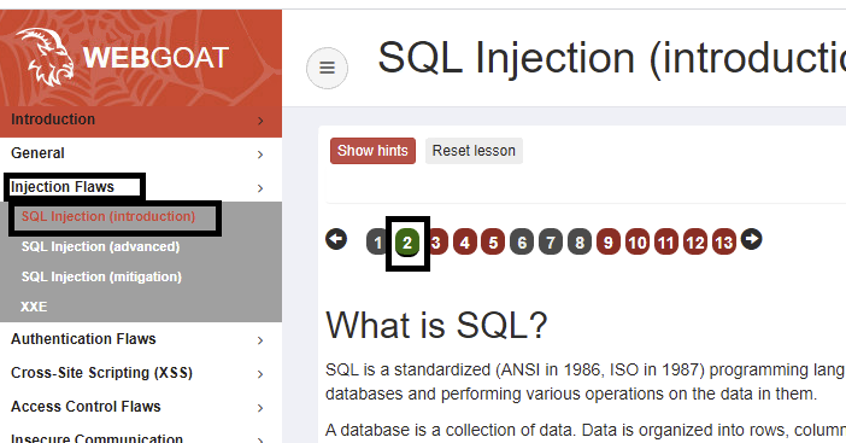 SQL Injection Lesson