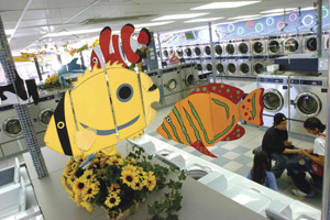 Bright and Fun Laundries