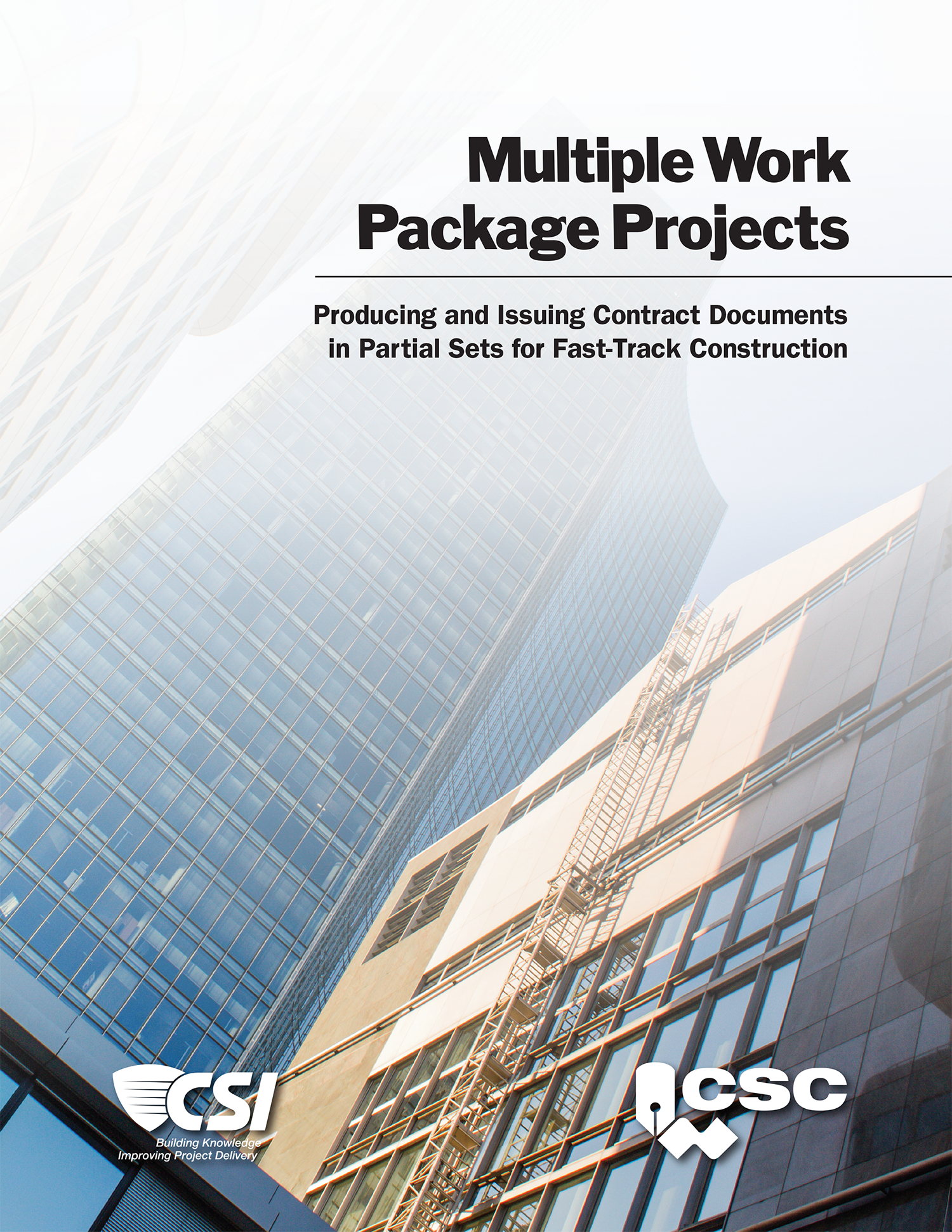 Multiple Work Package Projects