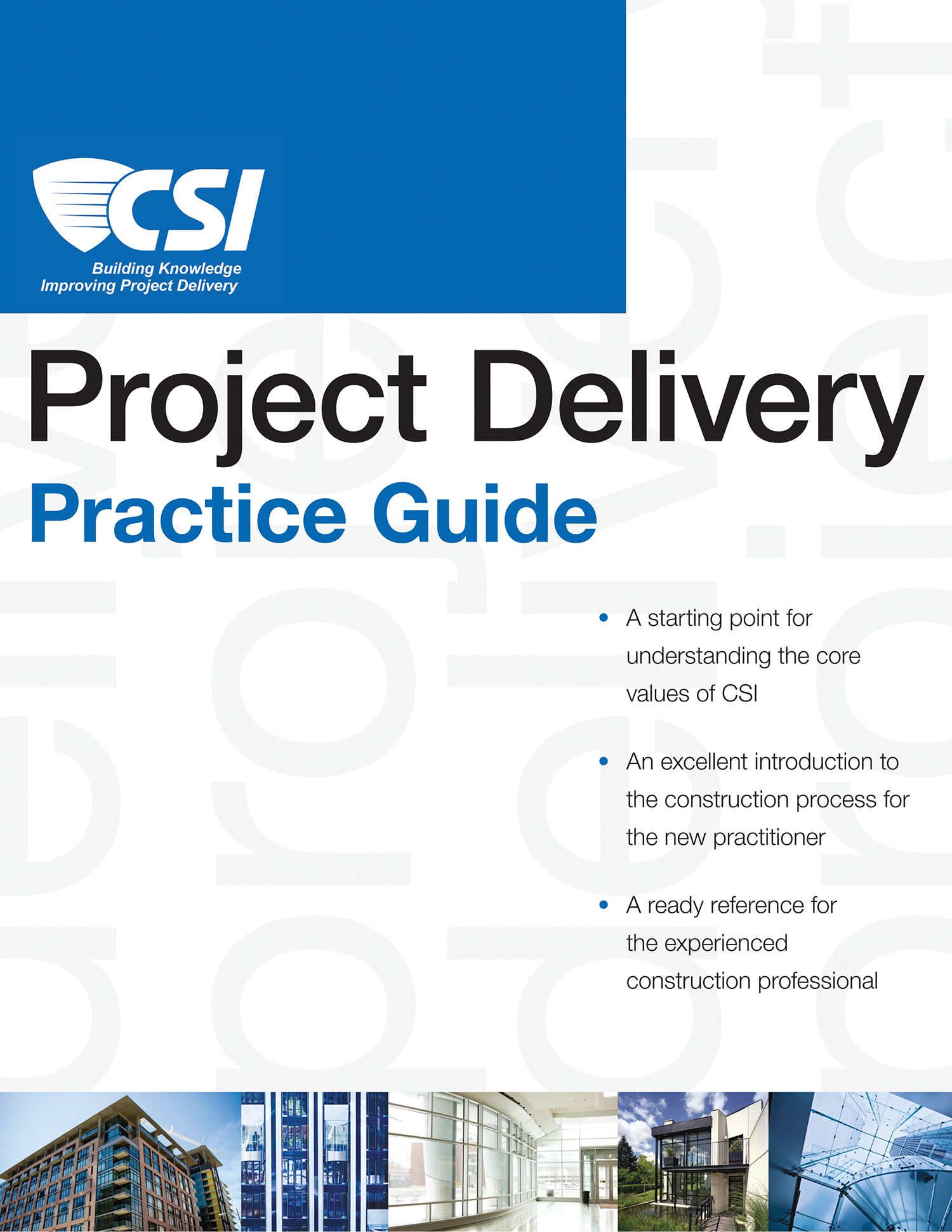 Project Delivery Practice Guide