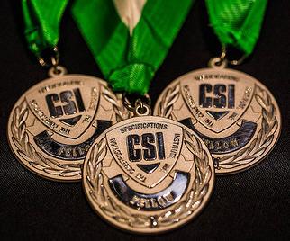 CSI Fellowship Award