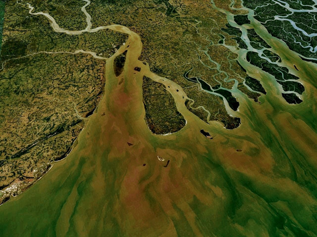 The Advent of Aerial Photography – Eye in the Sky