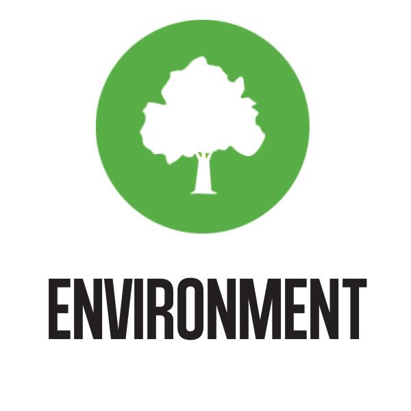 Environment Button