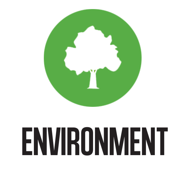 Environment_next