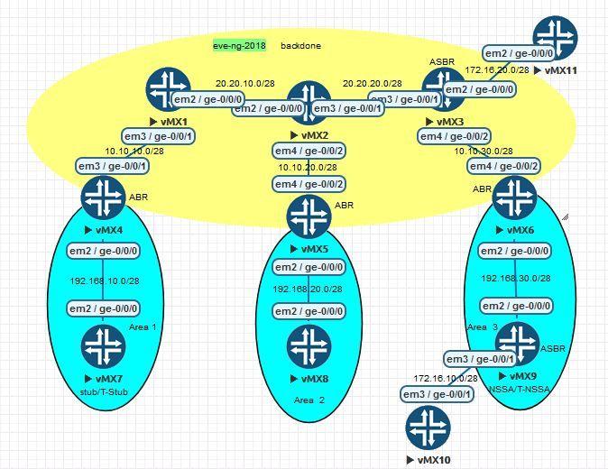 OSPF-LSA.JPG