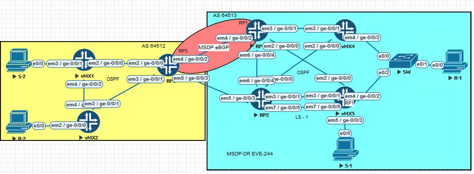 MSDP.PNG