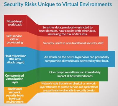 Security Risks Unique to Virtual Environments