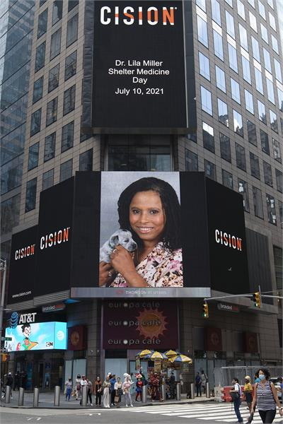Picture of Dr. Miller Shelter Medicine Day July 10th, 2021 in Times Square