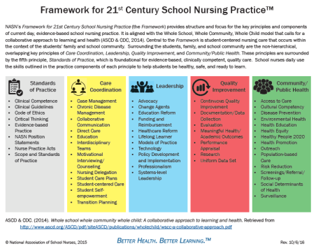 Framework for 21st Century School Nursing Practice Key Principle Practice Components