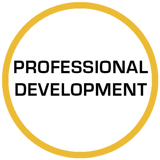 PROFESSIONAL DEVELOPMENT PORTAL
