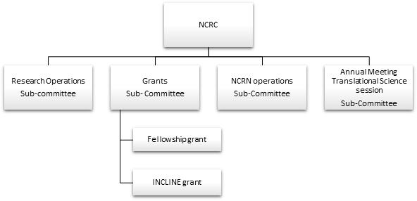 NCRC Subcommittee Structure
