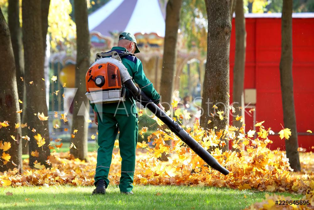 worker blowing leaves