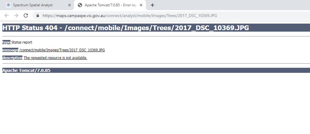 SSA Image Error