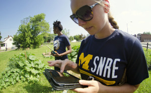 """Students from the University of Michigan's School of Natural Resources and Environment survey an urban garden located on an abandoned lot in Detroit. 