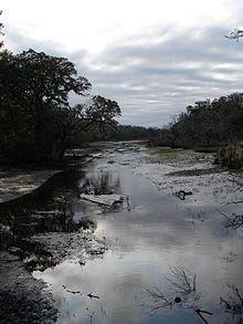 220px-Cumberland-island-marsh Credit NPS