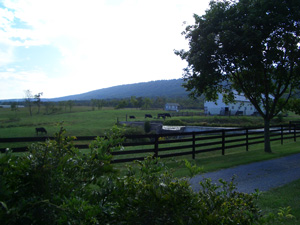 View of Blair Mountain from the historic village of Gerrardstown, W.Va. | Credit: Nell Ziehl