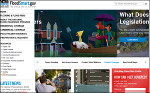 Screencap of the official site of the National Flood Insurance Program.