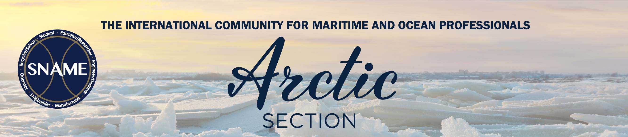 ArcticSection