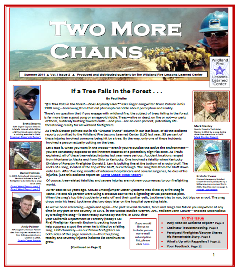 Cover of Two More Chains Summer 2011